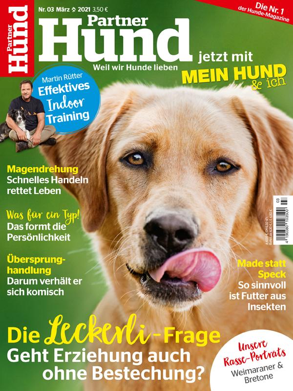 Partner Hund | Ausgabe 03-2021