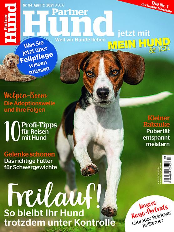 Partner Hund | Ausgabe 04-2021