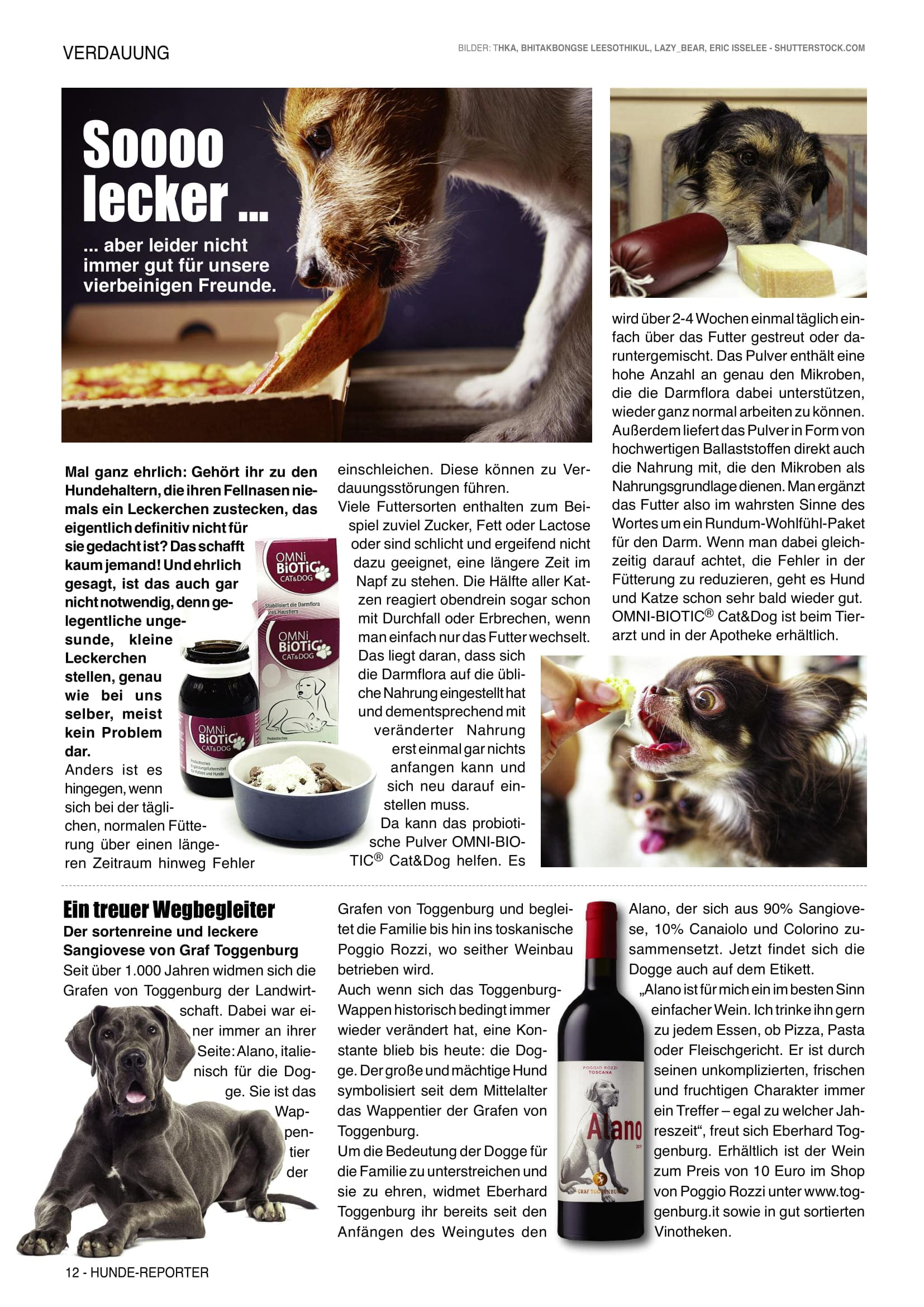 Hunde Reporter | Ausgabe 105 - März 2021
