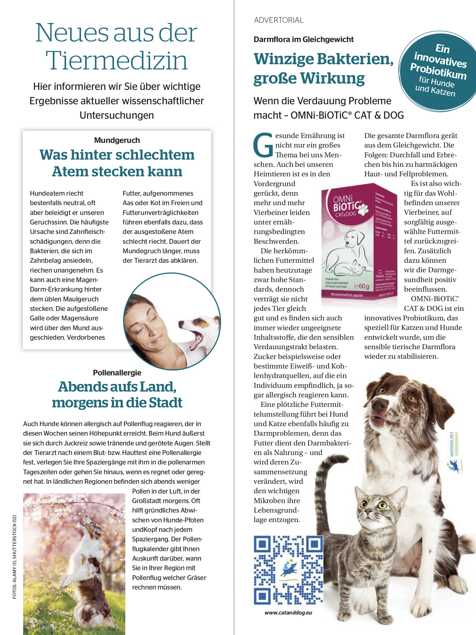 Partner Hund | Ausgabe 05-2021
