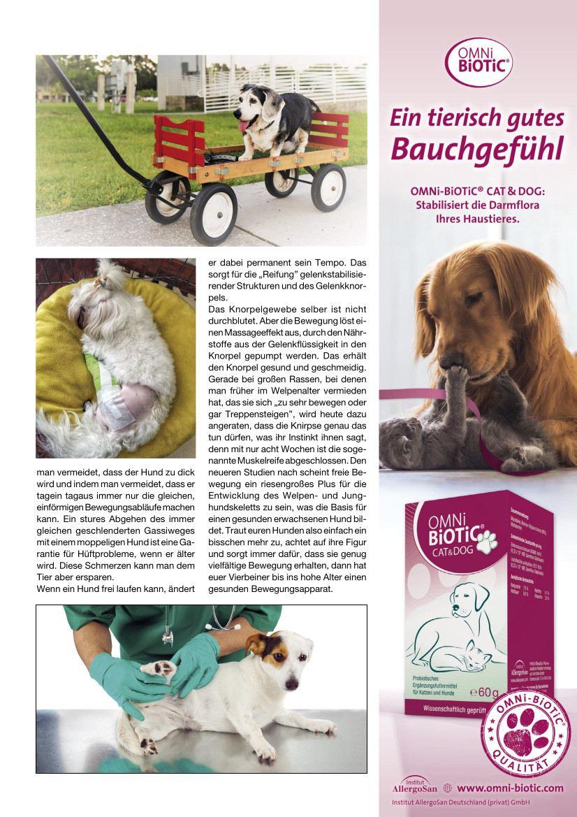 Hunde Reporter | Ausgabe 109 - Juli 2021