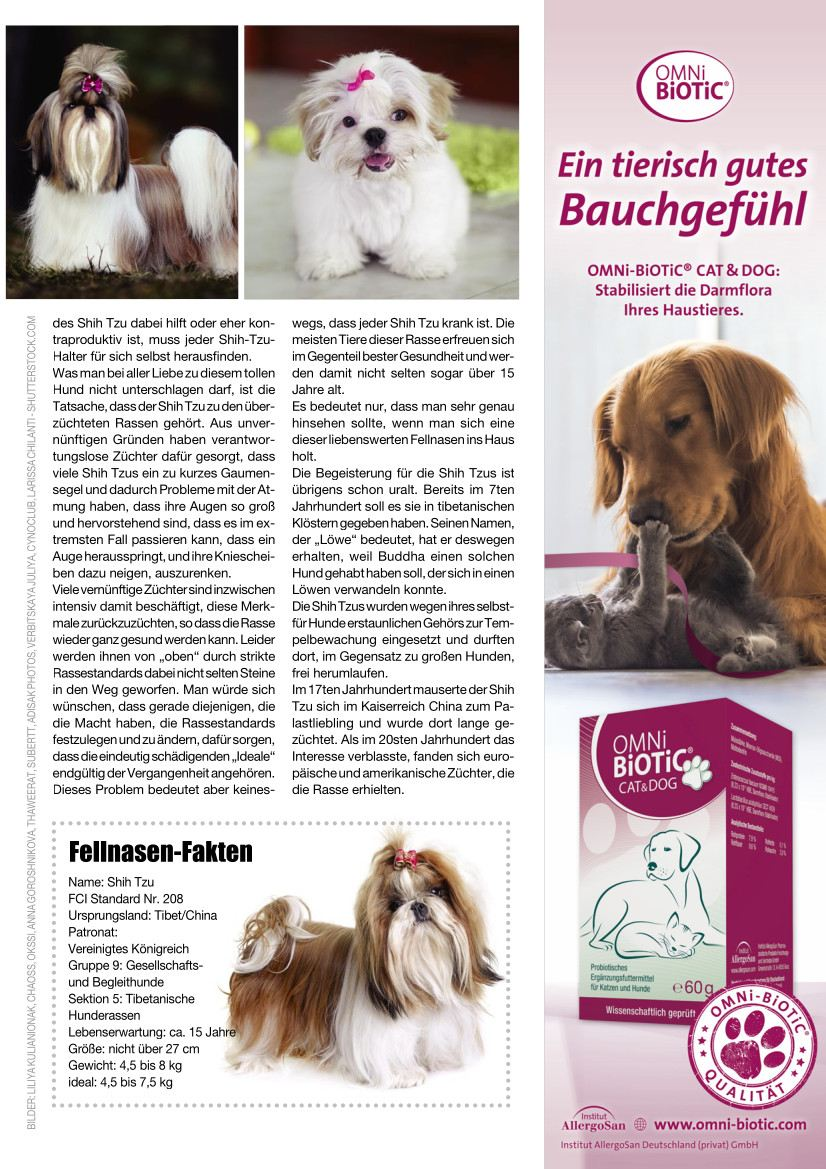 Hunde Reporter | Ausgabe 111 - September 2021