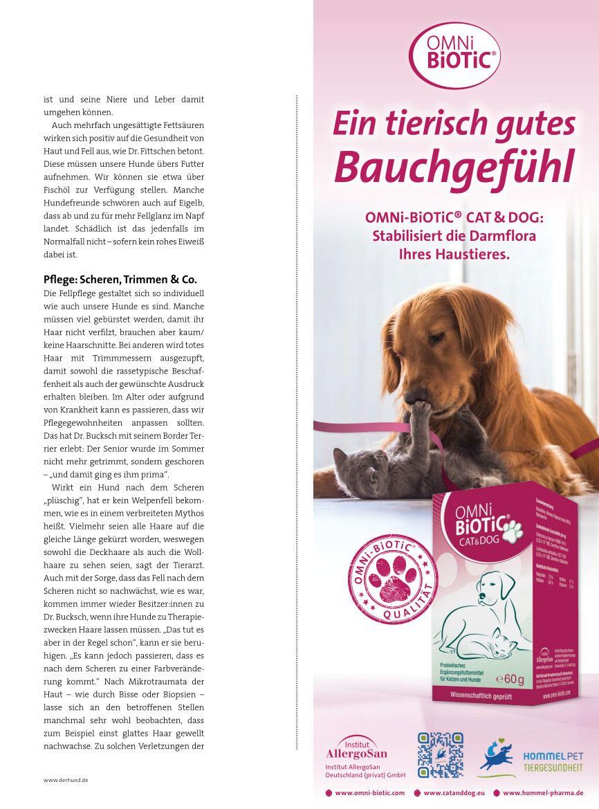 Der Hund | Ausgabe 11-2021